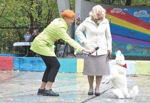 Открытие площадки для выгула собак