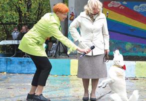 Елена Волкова на Празднике четвероногих друзей